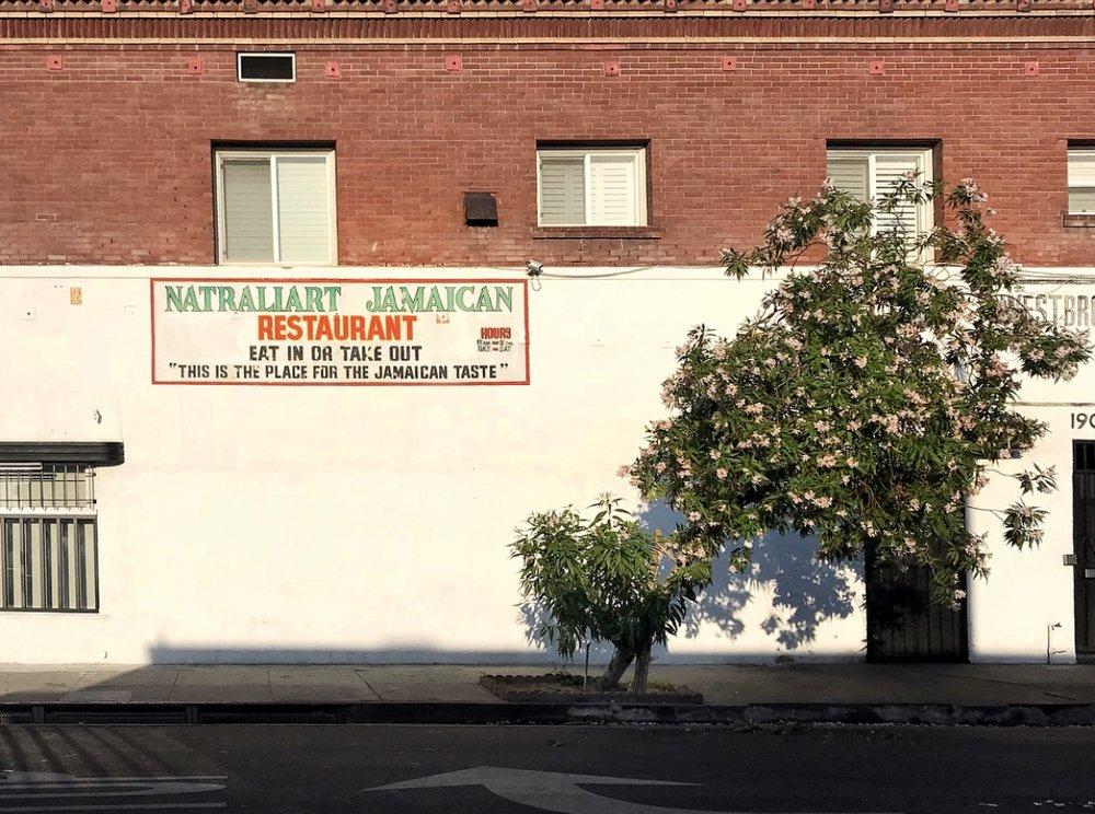 Jucy's Natraliart