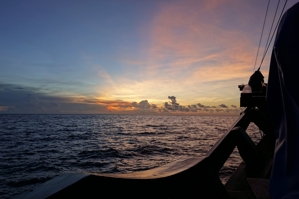 u sunset pink boat 927.jpg