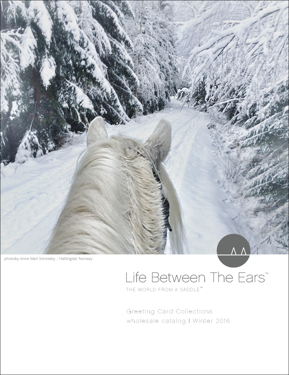 Life Between The Ears | Catalog