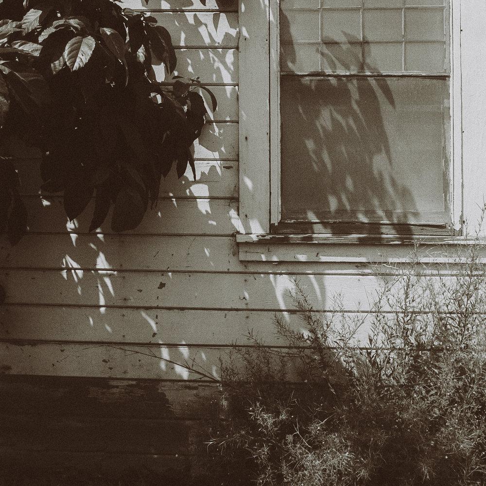 11 window.jpg