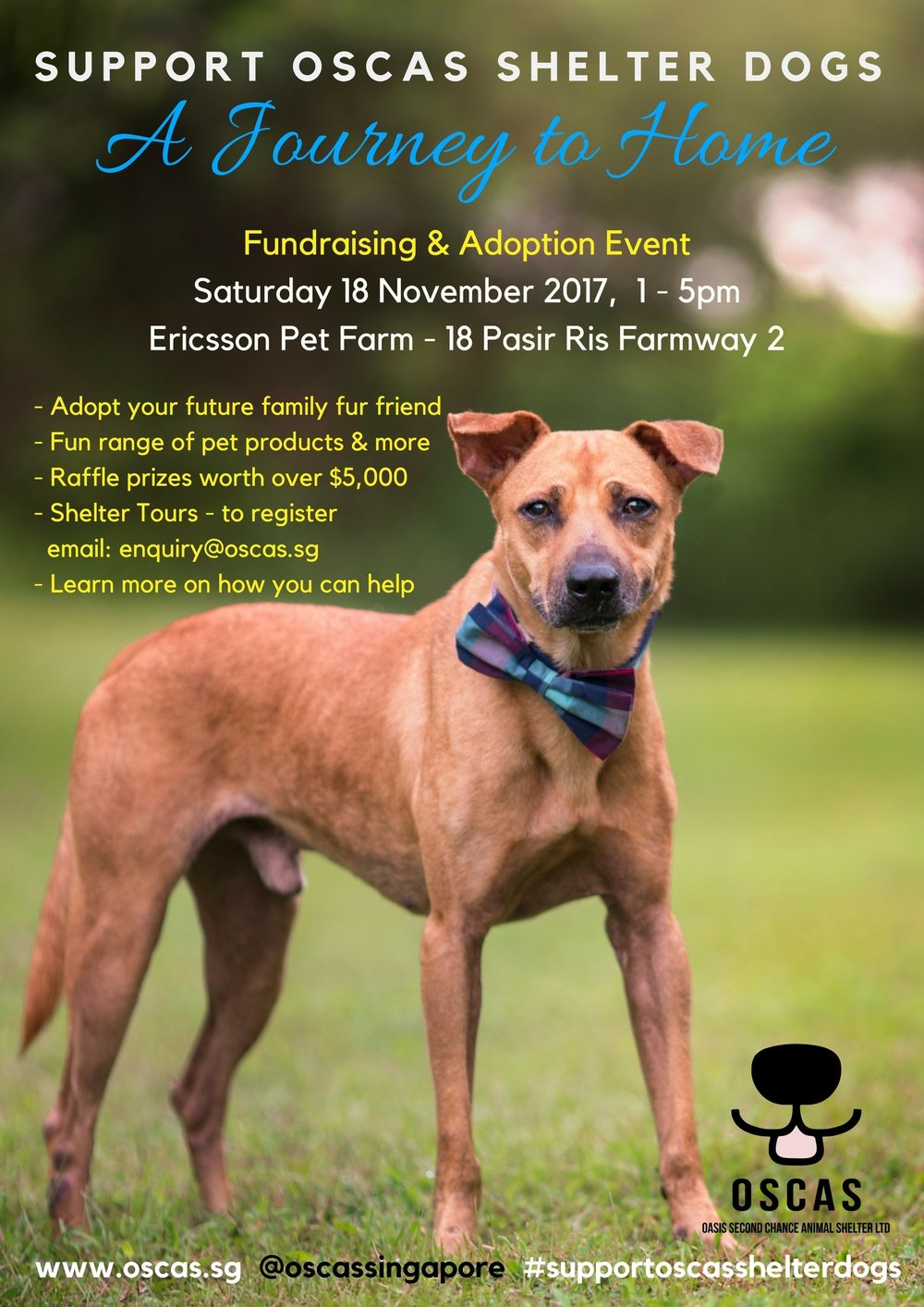 OSCAS Poster - Journey to Home Fundraiser & Adoption event - 18 Nov. 2017.jpg