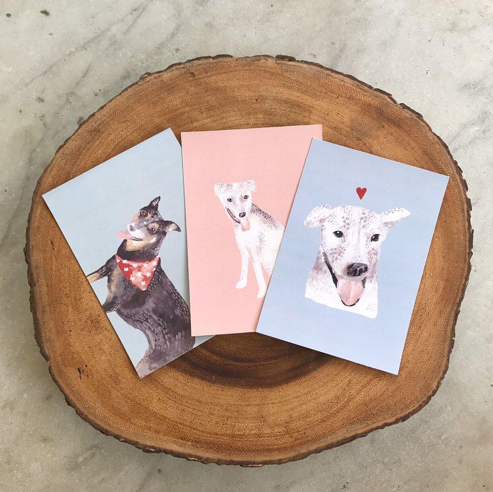 POSTCARD SET - Featuring all 3 Oscas Dogs!