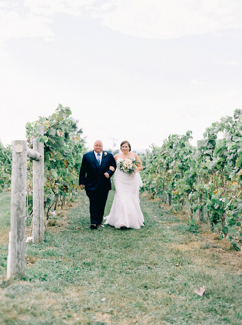 bluestone-vineyard-wedding-bridgewater-va-13.jpg