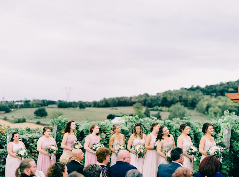 bluestone-vineyard-wedding-bridgewater-va-14.jpg