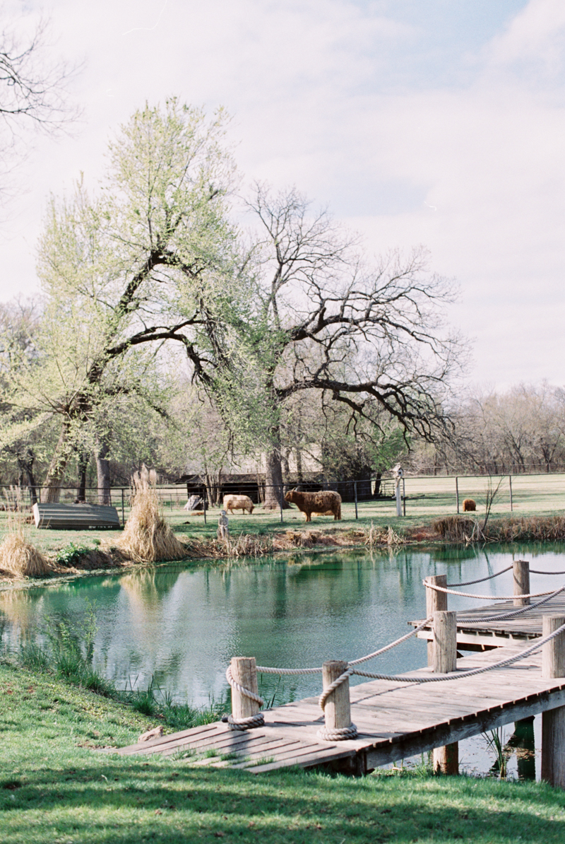 french-country-wedding-inspiration-norman-oklahoma-15.jpg
