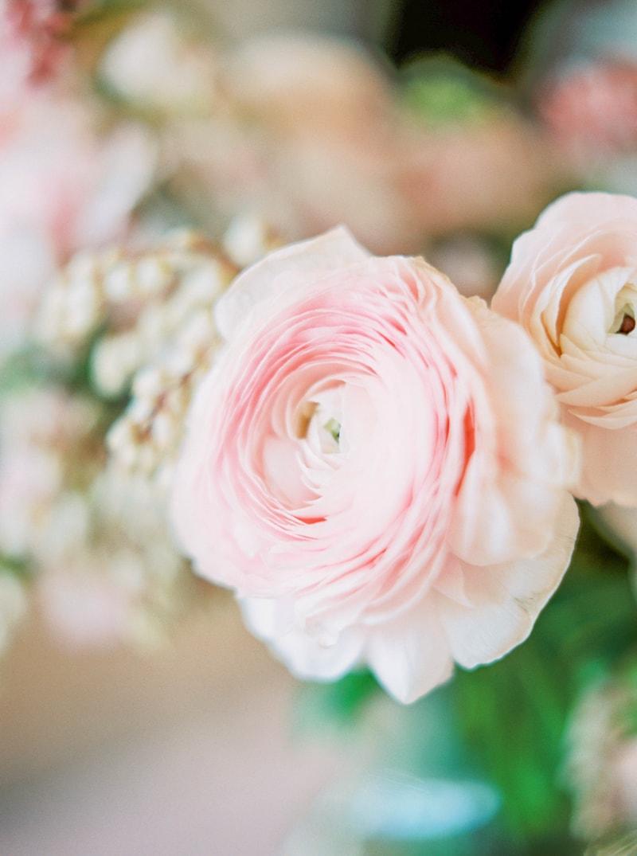 lovely-bride-wedding-dresses-fine-art-contax-645-21-min.jpg