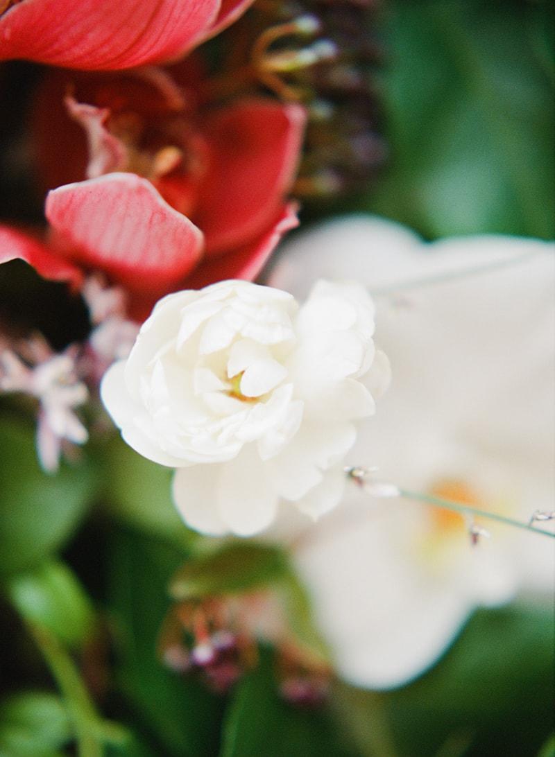 hawaii-botanical-wedding-inspiration-contax-645-2-min.jpg