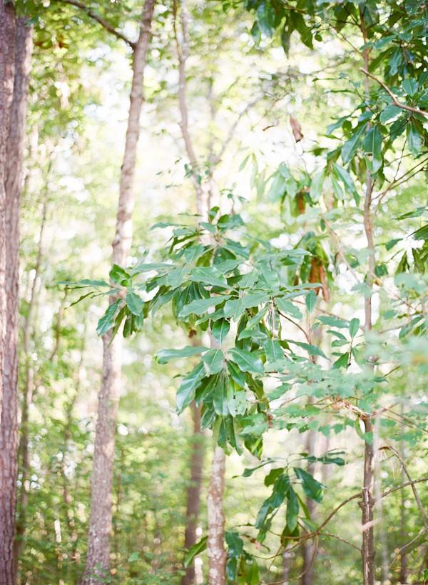 forest wedding