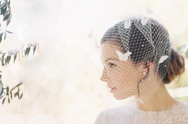 butterfly birdcage veil