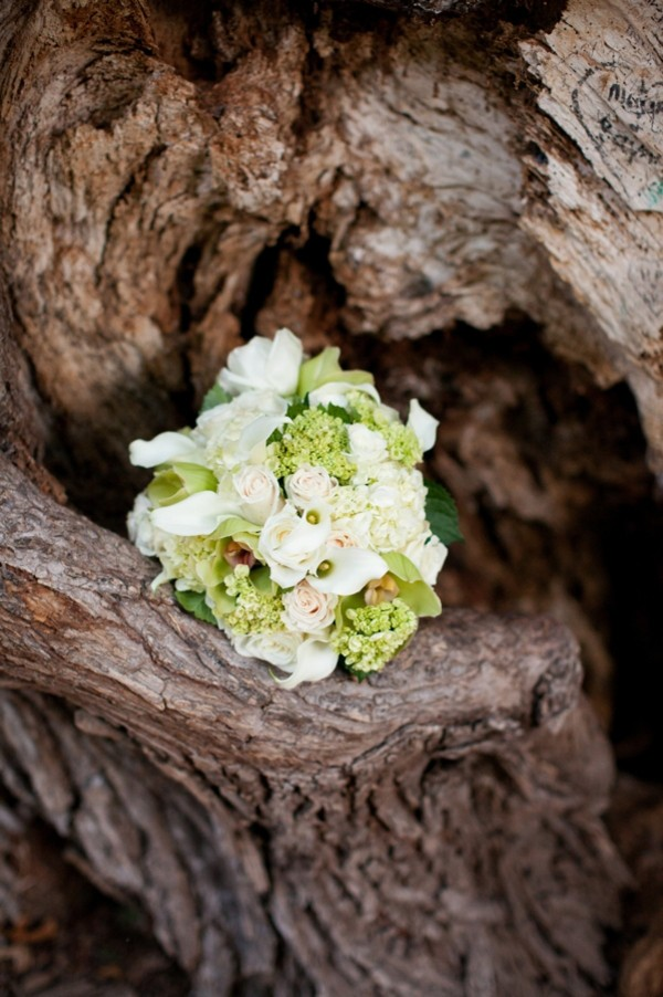 fort-worth-botanical-gardens-texas-real-weddings-trendy-bride-25