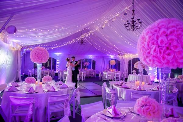 tampa fl weddings
