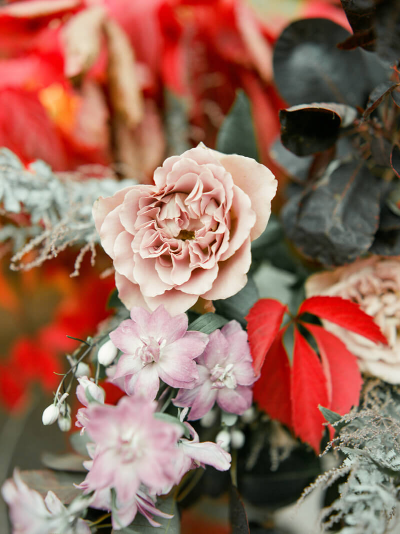red-sensation-wedding-shoot-fine-art-film-10.jpg