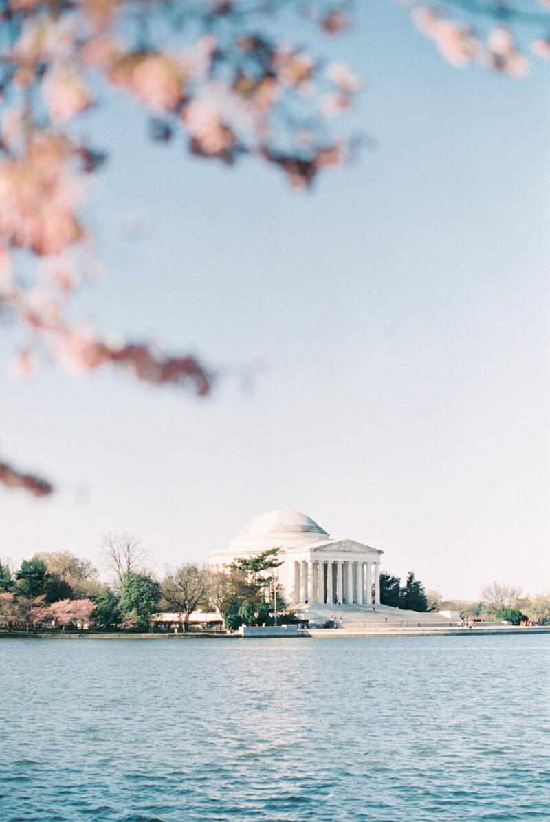 cherry-blossom-engagement-photos-fine-art-8.jpg