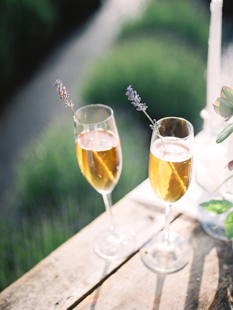 english-lavender-farm-wedding-inspo-2.jpg