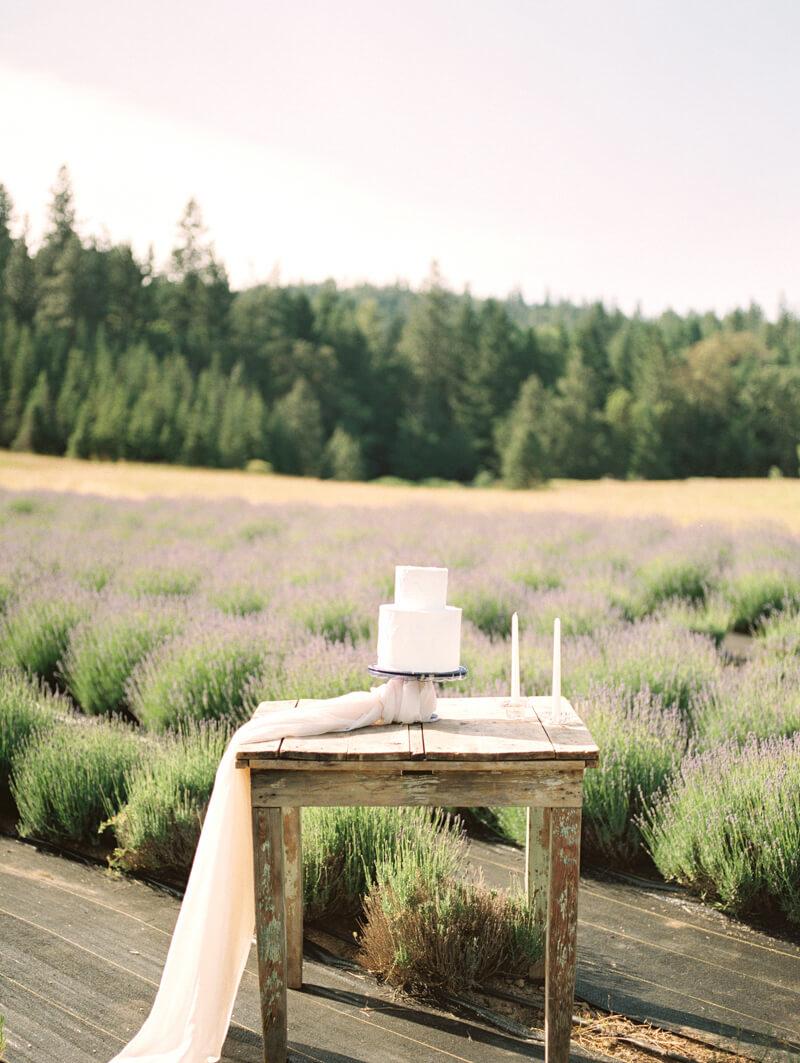 english-lavender-farm-wedding-inspo-16.jpg