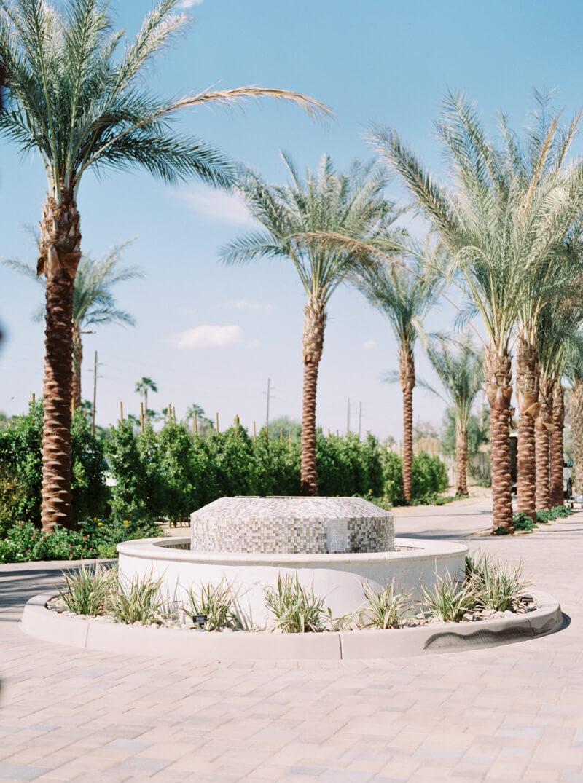 palm-springs-california-wedding-photos-6.jpg