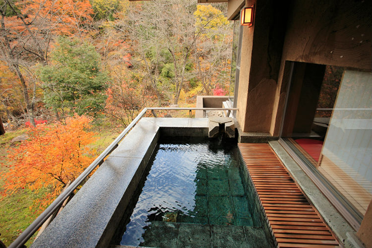 senjuan-ryokan-japan-private-tour-3.jpg