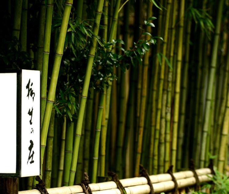 yagyu-no-sho-ryokan-japan-private-tour-6.jpg
