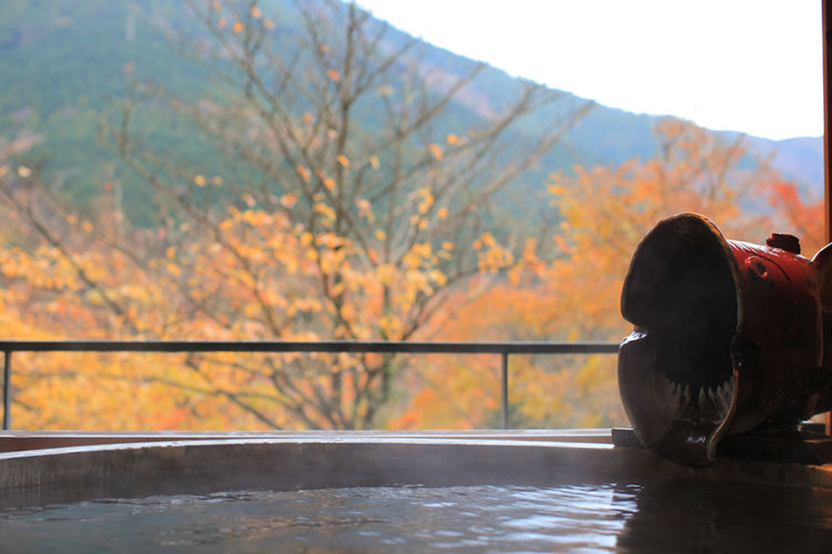 hakone-ginyu-ryokan-japan-private-tour-3.jpg
