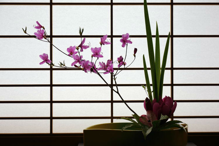 kifu-no-sato-ryokan-japan-private-tour-2.jpg