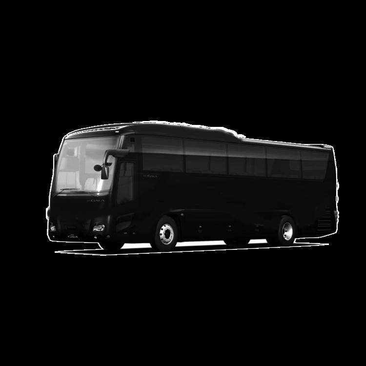 Med+Bus.png