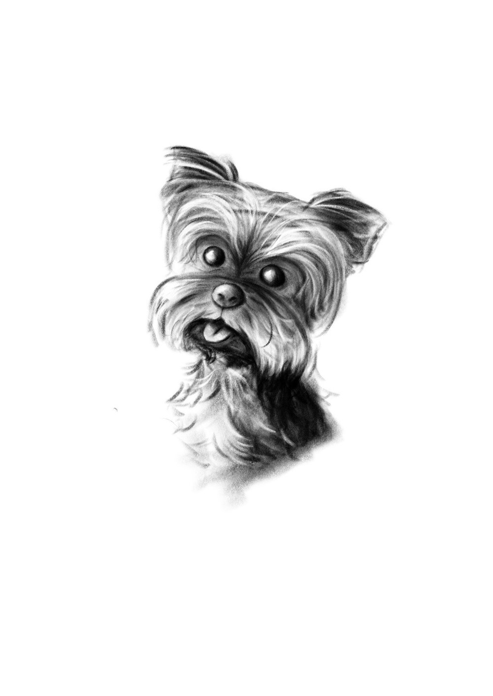 dog person print 1.jpg