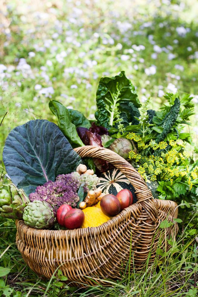 FoodJuly15008.jpg