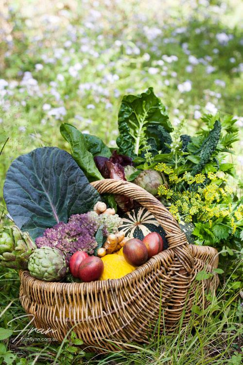 gwinaganna-lifestyle-retreat-vegetables.jpg