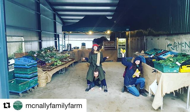 If you can, head out to @mcnallyfamilyfarm in Ring Commons, Co. Dublin. Eircode is K32RW08.  Repost @mcnallyfamilyfarm with @get_repost ・・・ Our shop is stocked and we are ready to go! The roads are cleared, the vegetables are de-frosted, we have tea and cake (vegetable cakes!) And we are here til 4pm!