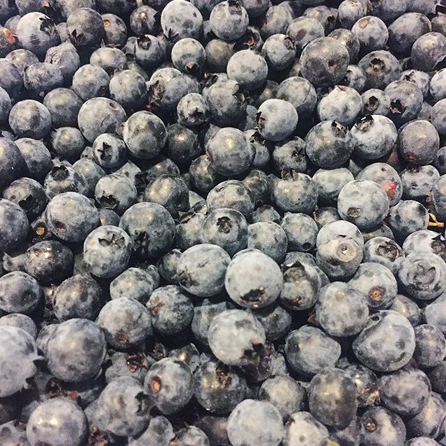 Fresh Muskoka blueberries anyone?   Learn more about the Cottage Cooler on our website!   #muskoka #muskokawoods #blueberries #yummy #cottage #cooler #cottagecooler #fresh #breakfast #meal #food #catering #cateringservice #foodies #prepare #drop #enjoy #yas