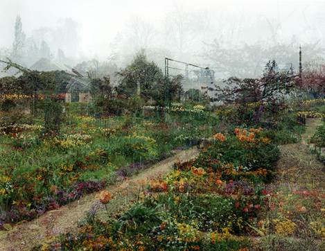 Sally Apfelbaum Horizontal Garden, 2012 C-Print