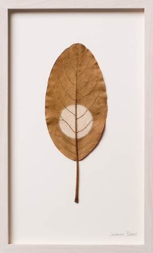 Susanna Bauer Moon XV, 2016 Magnola leaf and cotton thread