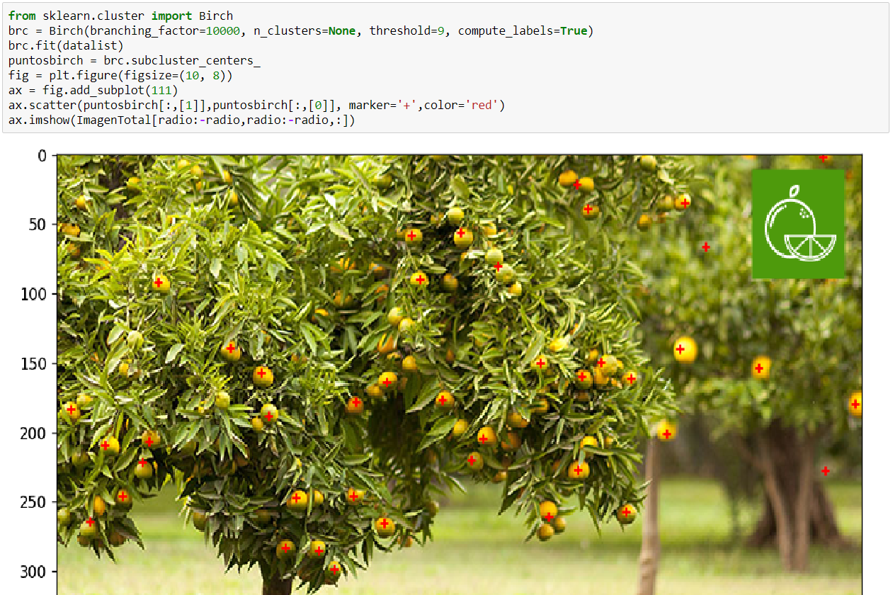 Crop Yield Assessment from Photos with Python and Scikit