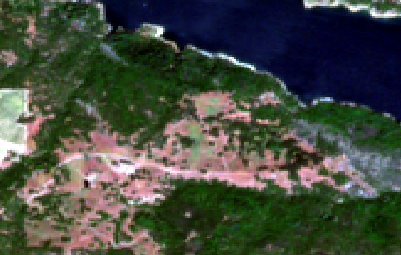 Biomass3.jpg