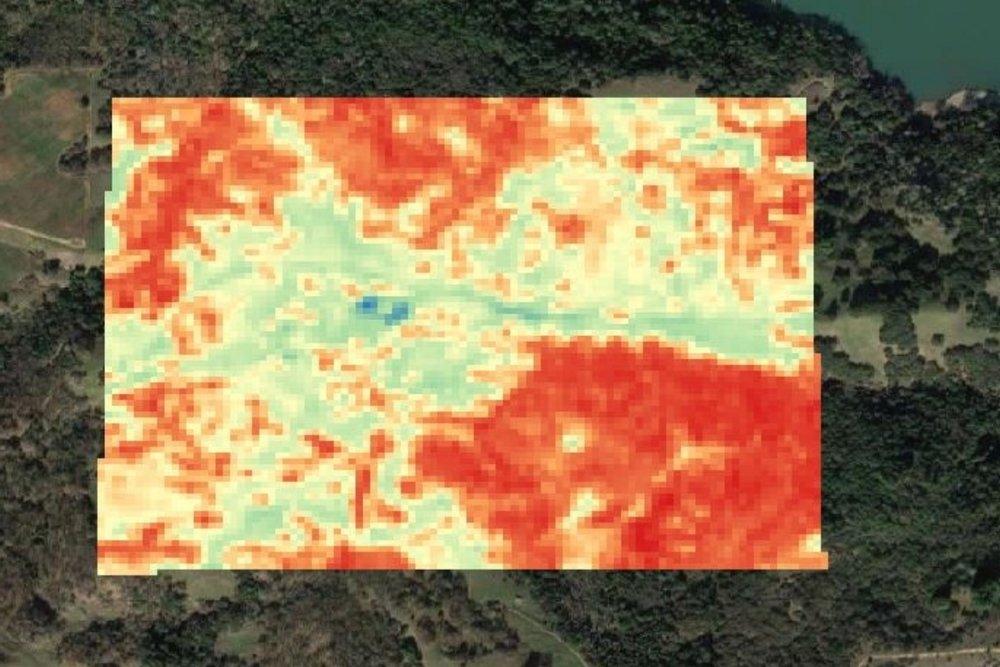 Biomass1.jpg