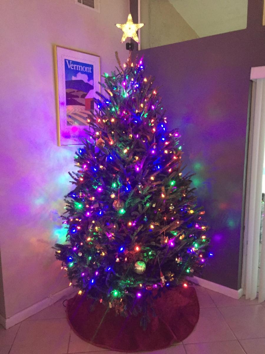 Christmas 2016.jpg