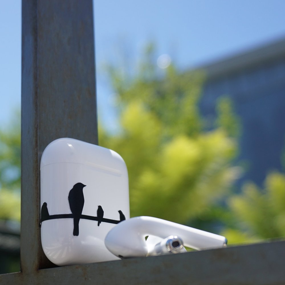 Your Case is a Canvas - Turn your plain white AirPods™ case into an art board to express your style.  Air Vinyl is a high quality vinyl decal that compliments Apple's artful design.