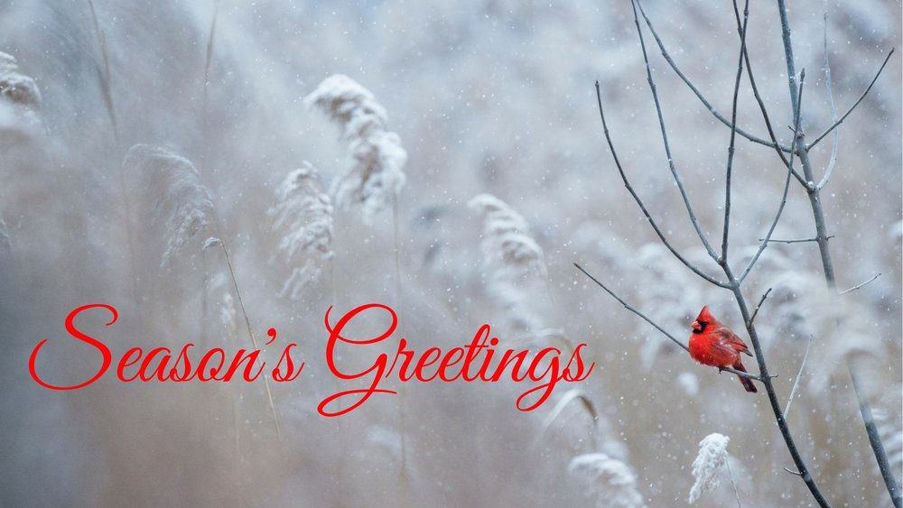 banner-seasongreetings.jpg