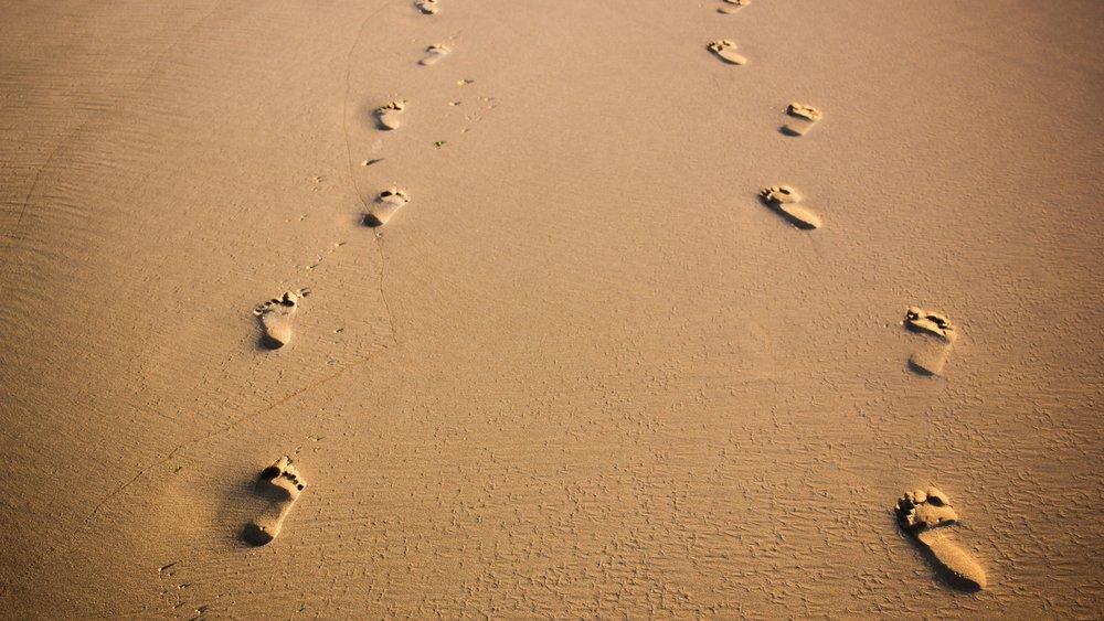 banner-footsteps.jpg