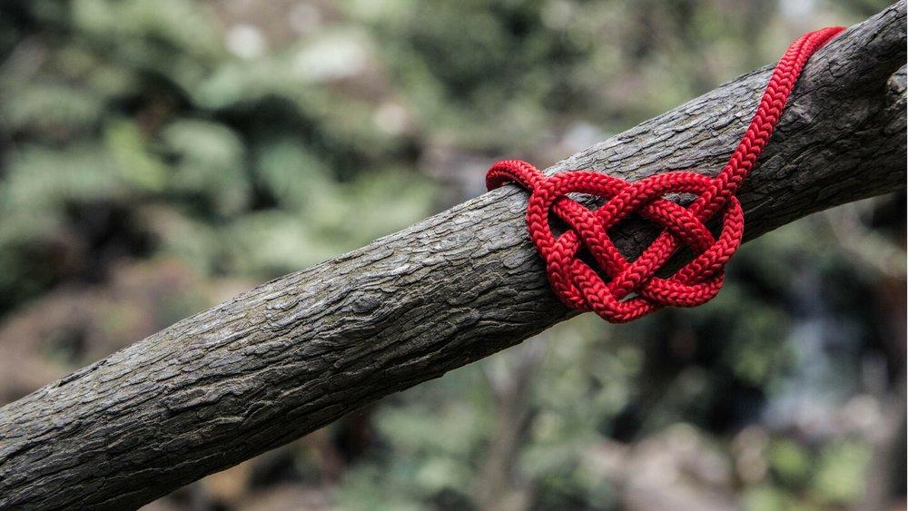 banner-oak-heart.jpg