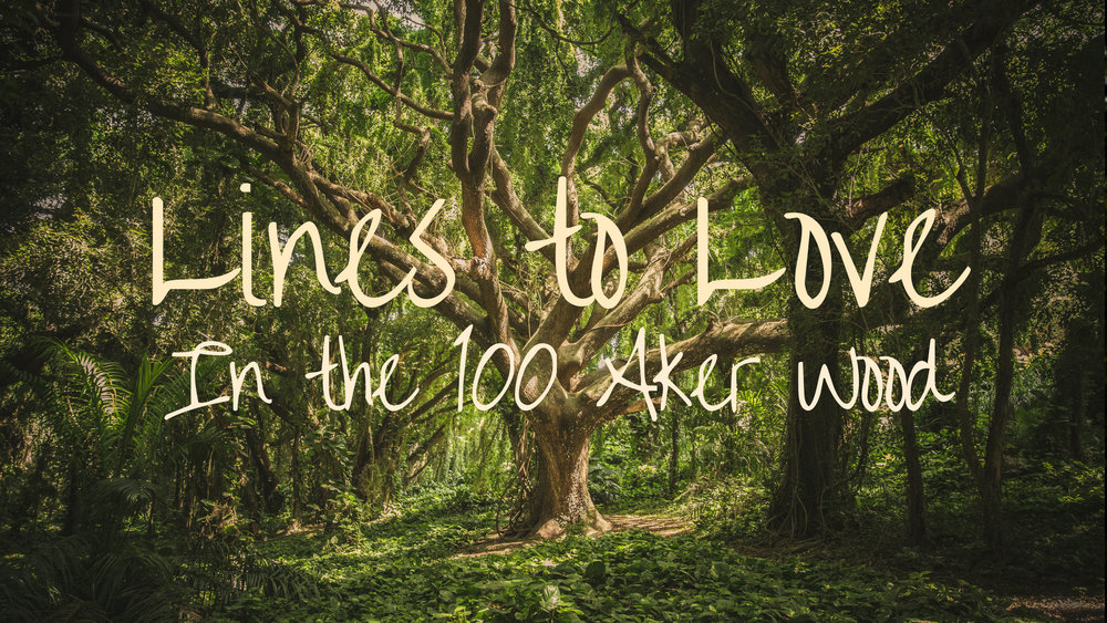 banner-lines-to-love-in-the-100-aker-wood.jpg