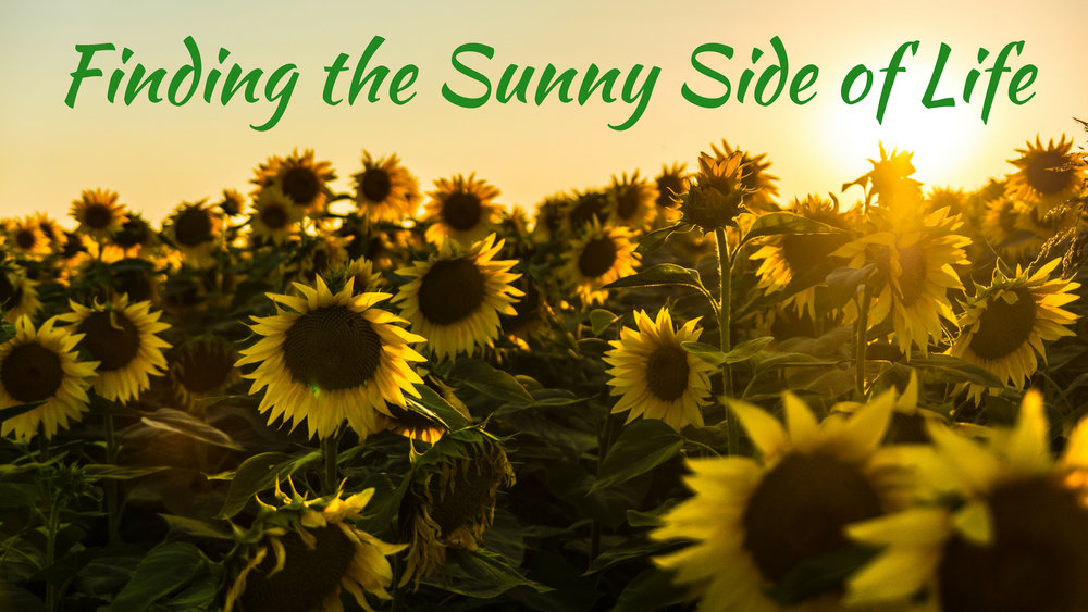 banner-finding-the-sunny-side-of-life-01.jpg