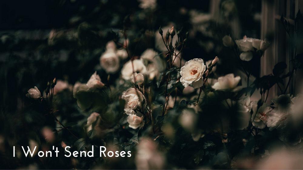 banner-standards-to-love-roses-02.jpg