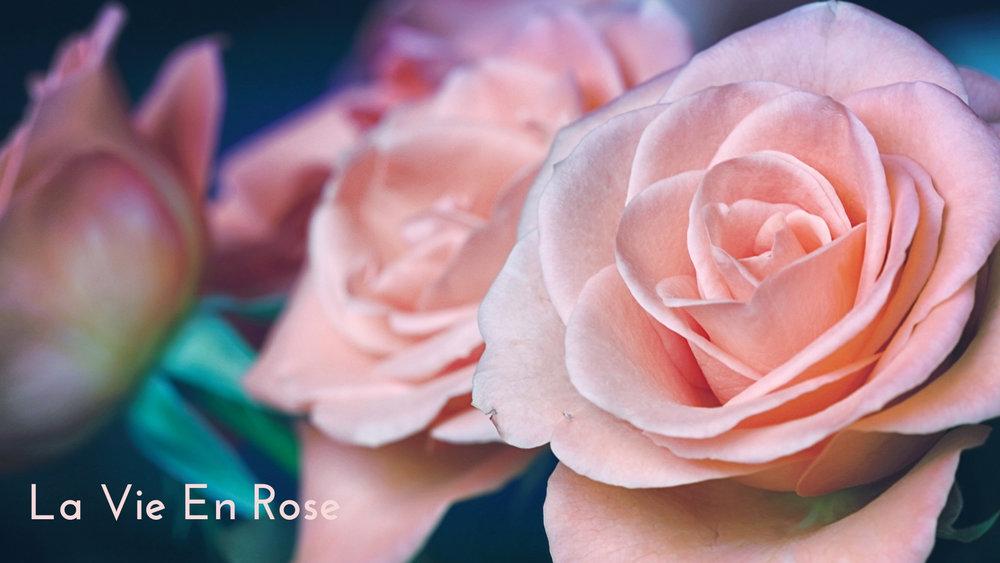 banner-standards-to-love-roses-06.jpg