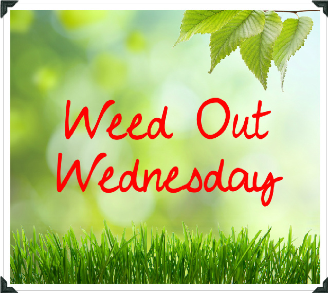 Weed Out Wednesday
