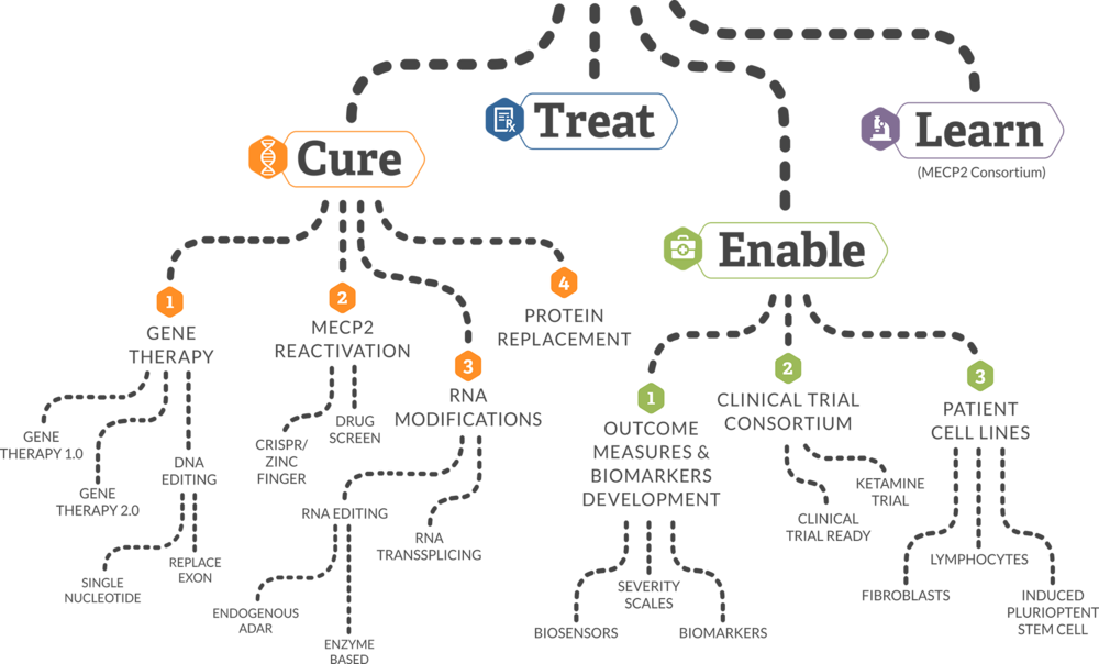 MAP TO A CURE