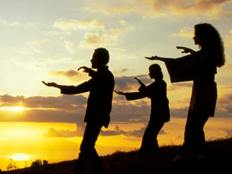 Tai Chi integrates the connections between mind, body, and spirit in a quest for the highest form of harmony in life through the combination of exercise and meditation. -