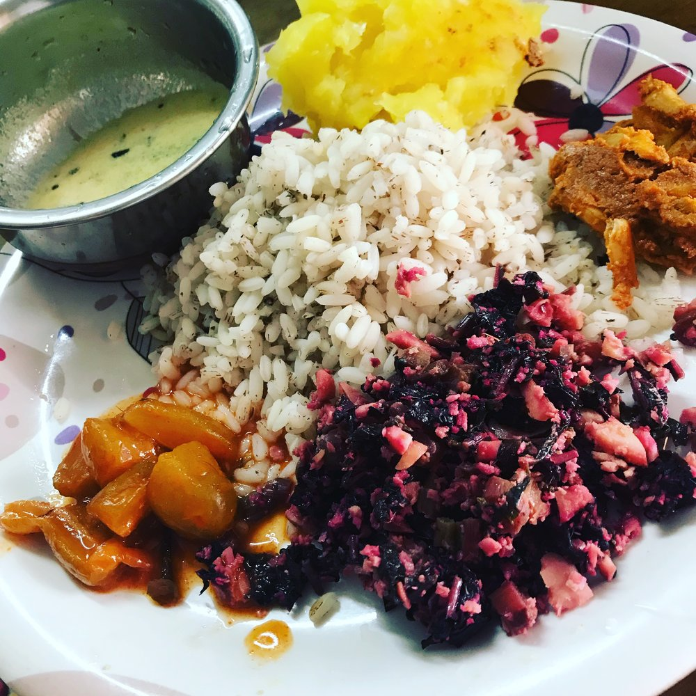 Vobrant colors for lunch: local rice, coconut curry sauce, turmeric and cassava smash, fish curry, red spinach thoran, amla achar (pickled gooseberries)
