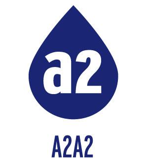 A2A2logoVERT.jpg