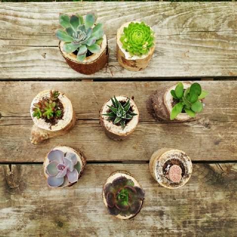 Hidden Garden Workshop